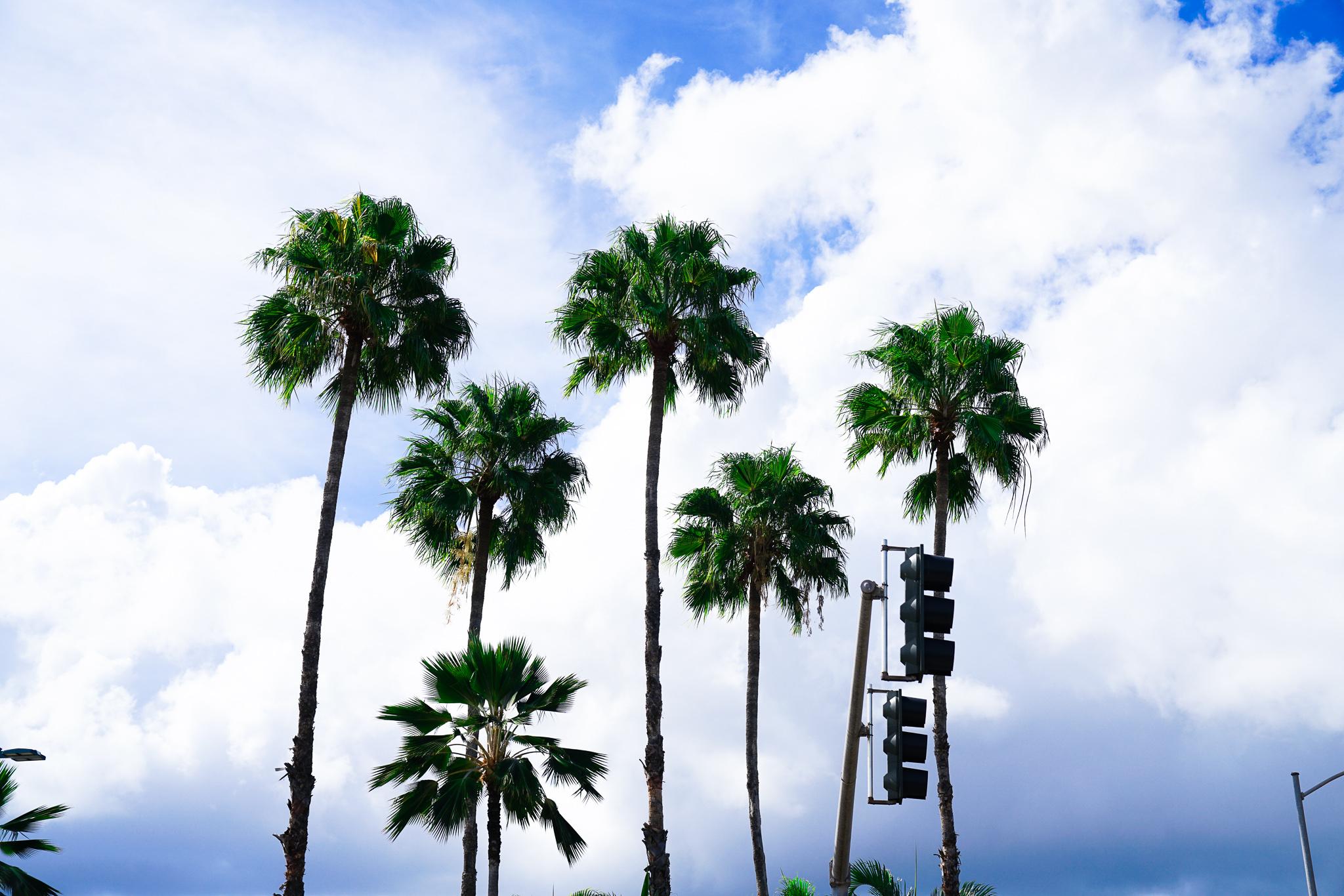 【GoPro】白飛び問題を解消!NDフィルターオススメ4選