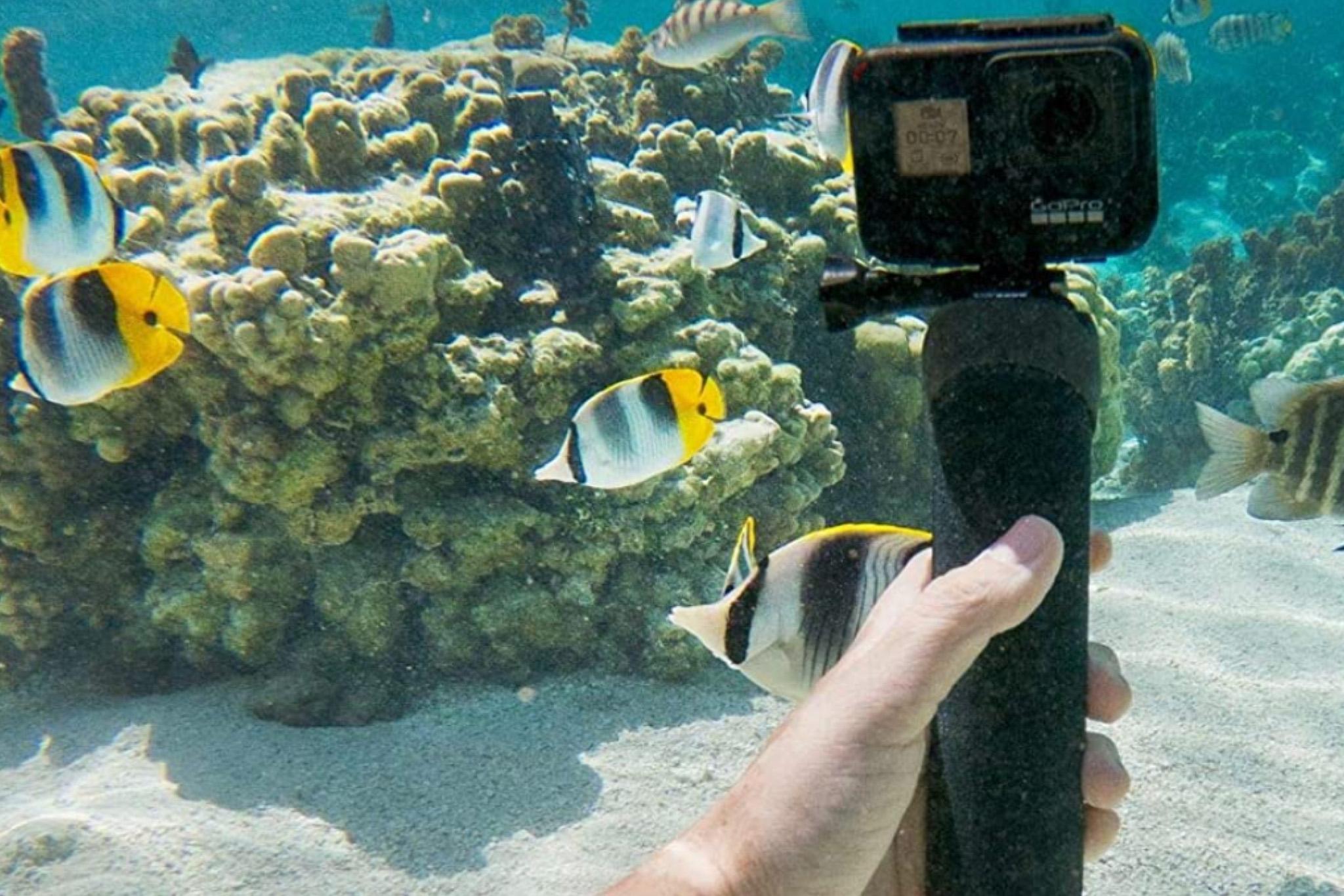 【GoPro】水中・海中撮影で知っておきたい設定とオススメアイテム13選