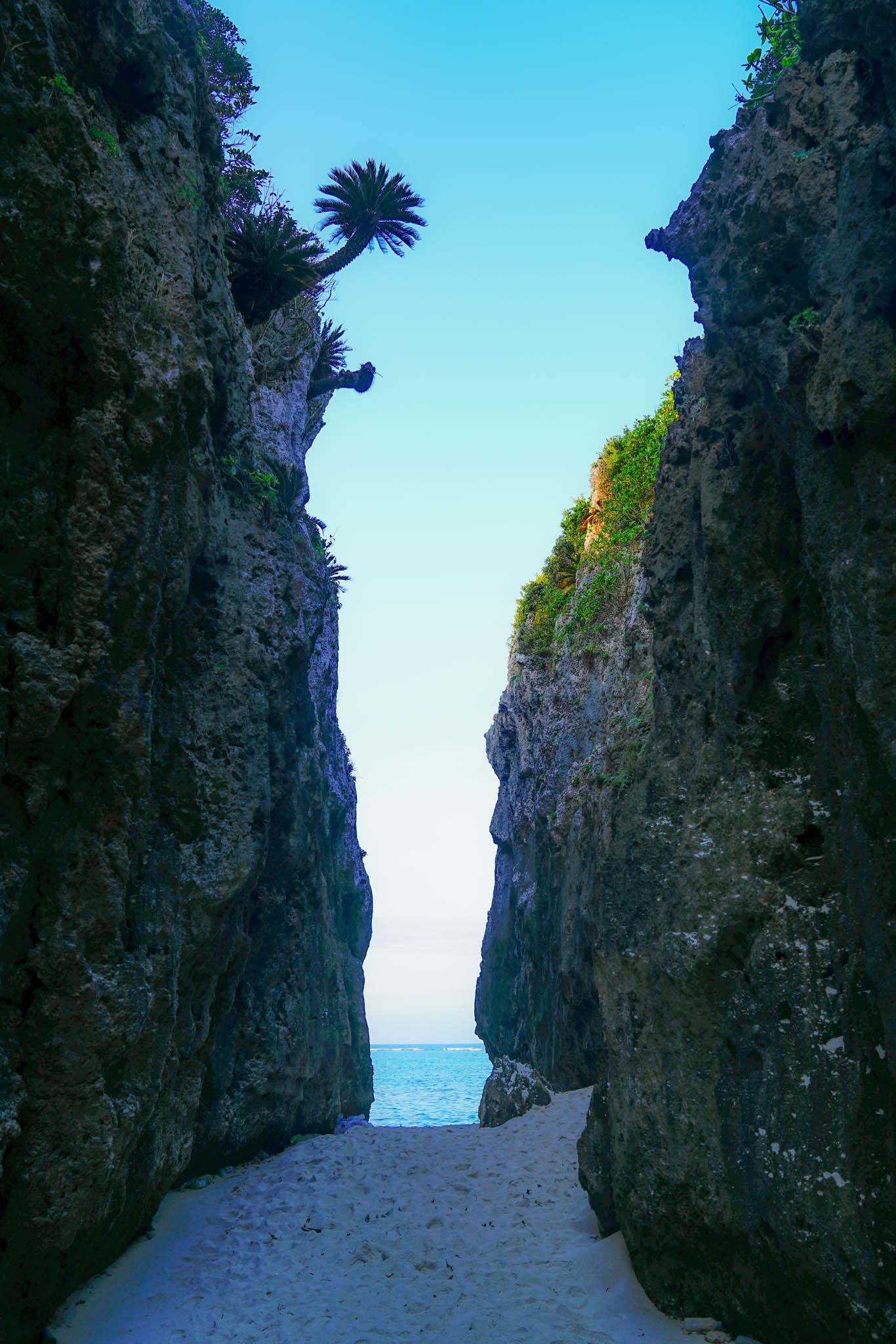 沖縄・恩納村 / Day2 / 万座毛 → 備瀬のフクギ並木 → 備瀬のワルミ→ しまぶた屋